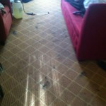 Boca Raton-Carpet-Clean-before