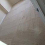 Boca Raton-Carpet-Clean-room