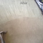 Boca Raton-Carpet-Cleaning-Company