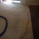 Boca Raton-Traffic-Area-carpet-cleaners