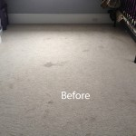 Cranberry Juice Stain Removal Boca Raton A