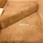 Stairs-Carpet-Cleaning-Boca Raton-A