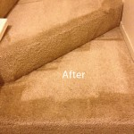 Stairs-Carpet-Cleaning-Boca Raton-B