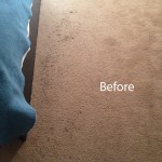 ink stain removal Boca Raton-A