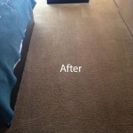 ink stain removal Boca Raton-B
